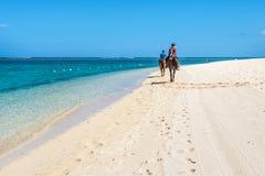 Paare, die zu Pferd entlang das Meer reiten Lizenzfreies Stockbild