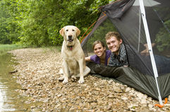 Paare in einem Zelt Stockfotos