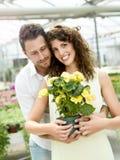 Paare haben den Spaß, der Blumentöpfe in einem Gewächshaus wählt lizenzfreies stockbild