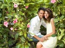 Paare haben den Spaß, der Blumentöpfe in einem Gewächshaus wählt stockfoto