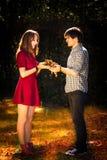Paare im Herbstpark Lizenzfreie Stockbilder