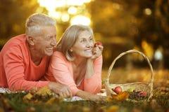 Paare im Herbstpark Stockfotografie