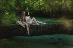 Paare im Holz stockfotos
