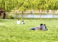 Paare im Park Stockfotografie
