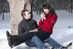 Paare im Winterpark Lizenzfreie Stockbilder