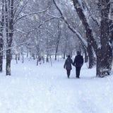 Paare im Winterwald Lizenzfreies Stockfoto