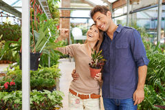 Paare kaufende Crotonanlage im Kindertagesstättenshop lizenzfreies stockbild