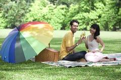 Paare mit Champagnergläsern im Park Stockbild