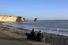 Paare mit dem Hund, der heraus zum Meer schaut Stockfotos