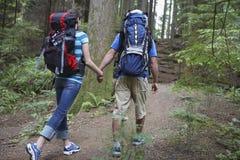 Paare mit den Rucksäcken, die in Wald gehen stockbild