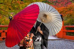 Paare mit den traditionellen japanischen Regenschirmen, die am herbstlichen Park in Kyoto aufwerfen lizenzfreie stockfotografie