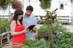 Paare mit Digital-Tablette im Gewächshaus Lizenzfreies Stockbild