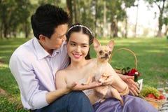 Paare mit einem Chihuahuahund Lizenzfreies Stockfoto