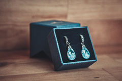 Paare Ohrringe Stockfotografie