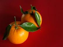 Paare Orangen mit Blättern Lizenzfreie Stockfotografie