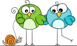 Paare von den Vögeln, die mit Schnecke gehen Lizenzfreie Stockbilder