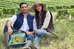 Paare von Weinbauern lizenzfreie stockfotos