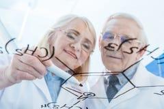 Paare von Wissenschaftlern in den weißen Mänteln, die mit chemischer Formel arbeiten Stockbilder