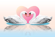 Paarschwanliebe Lizenzfreies Stockfoto