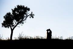 Paarsilhouetten op een heuvel stock foto's