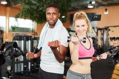Paartraining mit Gewichten Stockfoto