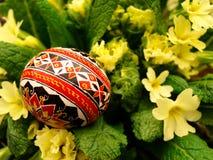 Paasei en bloemen royalty-vrije stock foto