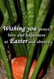 Paasei en een tekst ` die u vrede, liefde en geluk wensen in Pasen en altijd ` Royalty-vrije Stock Foto's