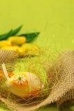 Paasei met bloem Royalty-vrije Stock Afbeeldingen