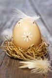 Paasei in nest Royalty-vrije Stock Afbeelding