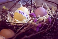 Paaseieren in een nest Stock Fotografie