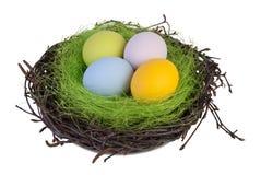 Paaseieren in een nest Royalty-vrije Stock Foto