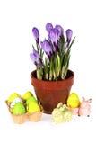 Paaseieren en Bloemen Stock Afbeelding