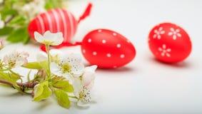 Paaseieren en bloemen op witte achtergrond Stock Fotografie