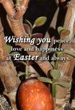 Paaseieren en een tekst ` die u vrede, liefde en geluk wensen in Pasen en altijd ` Stock Afbeelding