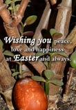 Paaseieren en een tekst ` die u vrede, liefde en geluk wensen in Pasen en altijd ` Royalty-vrije Stock Foto