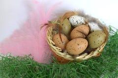 Paaseieren en roze veren op het groene gras royalty-vrije stock fotografie