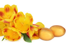Paaseieren en Tulpen Royalty-vrije Stock Foto