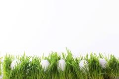 Paaseieren in gras Stock Afbeeldingen