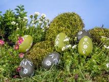 Paaseieren in Gras Stock Foto