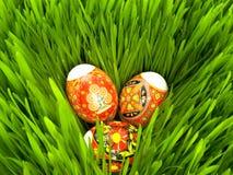 Paaseieren in het gras Stock Foto
