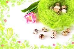 Paaseieren in het nest Stock Afbeelding