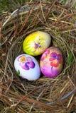Paaseieren in het nest Royalty-vrije Stock Fotografie
