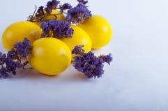 Paaseieren met bloemen op een witte achtergrond Royalty-vrije Stock Foto's