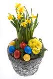 Paaseieren met de lentebloemen stock afbeeldingen
