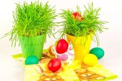 Paaseieren met decoratie en gras Stock Foto