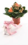 Paaseieren met konijntje en bloem stock foto's