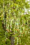 Paaseieren op boom royalty-vrije stock afbeeldingen