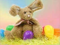 Paashaas en eieren Stock Foto