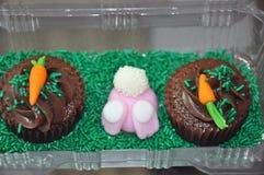 Paashaas en wortel cupcakes Royalty-vrije Stock Afbeeldingen