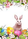 Paashaas, gekleurde eieren, gras en roze bloemen De kaart van waterverfpasen Royalty-vrije Stock Foto